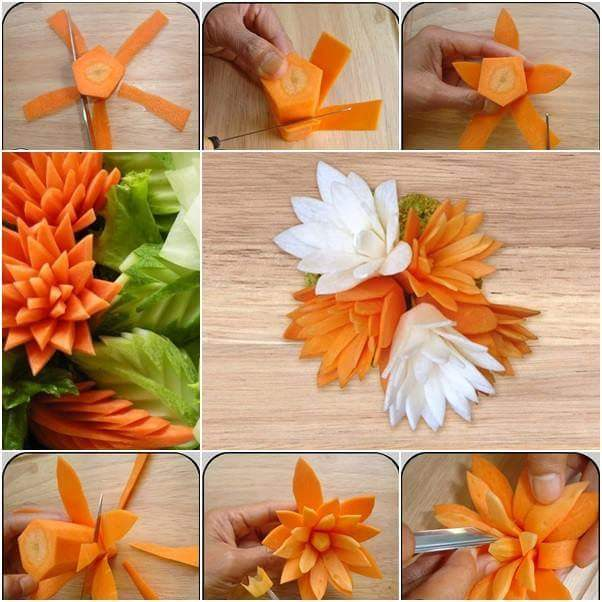 flower of carrots
