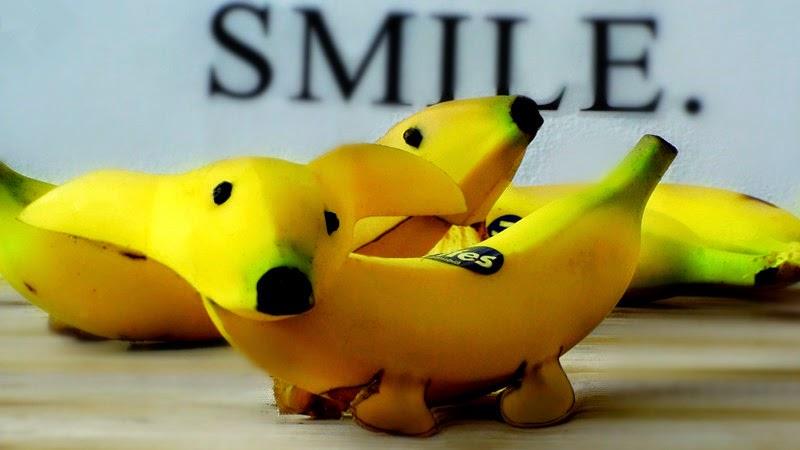 interesting dog made of banana