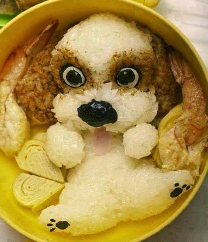 dog rice