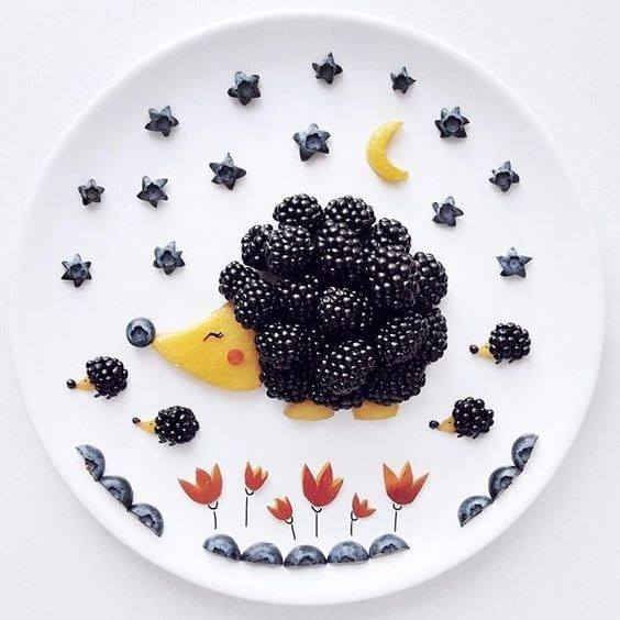 blackberries hedhehog